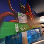 Mall Decorations & Branding15